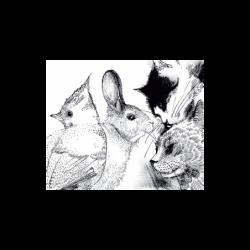 Fotomurales de pared Animals. Comprar fotomurales online de la marca Due