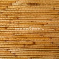 revestimientos de paredes  de Bambú japonés Perseo  de iberostil