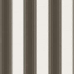 Dark Stripes 1269 Carlotta